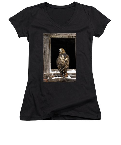 Red Tailed Women's V-Neck T-Shirt