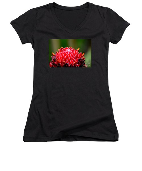 Red Torch Ginger Flower Head From Tropics Singapore Women's V-Neck T-Shirt (Junior Cut) by Imran Ahmed