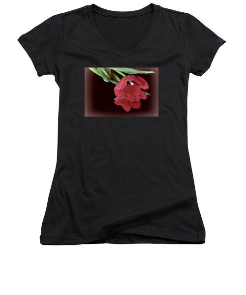 Red Tulip On Burgundy Women's V-Neck