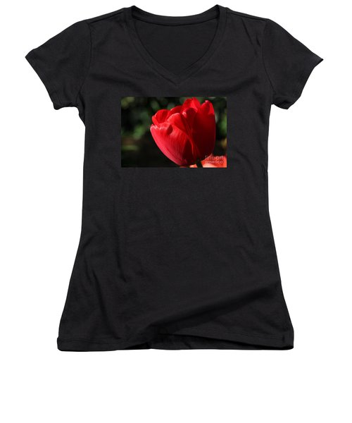 Red Tulip Women's V-Neck