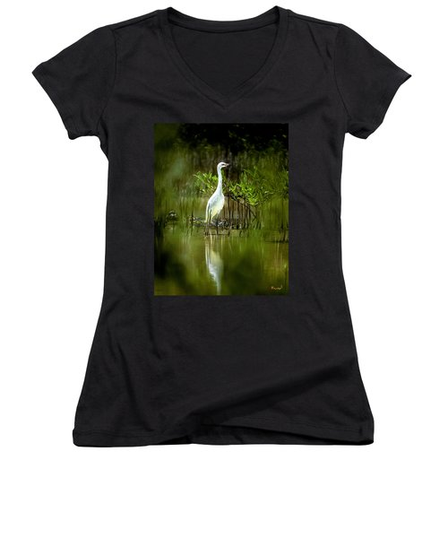 Reddish Egret 9c Women's V-Neck T-Shirt (Junior Cut) by Gerry Gantt