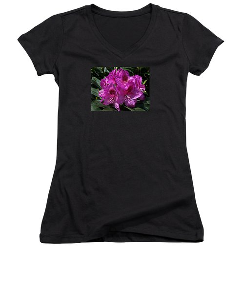 Rhododendron ' Anah Kruschke ' Women's V-Neck T-Shirt (Junior Cut) by William Tanneberger