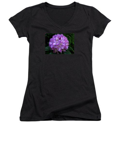Rhododendron ' Roseum Elegans '  Women's V-Neck T-Shirt (Junior Cut) by William Tanneberger