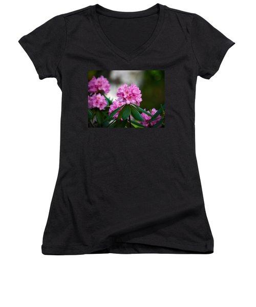Rhododendron Women's V-Neck T-Shirt (Junior Cut) by Jouko Lehto