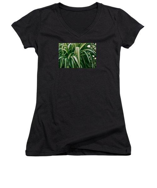 Ribbon Grass Women's V-Neck T-Shirt