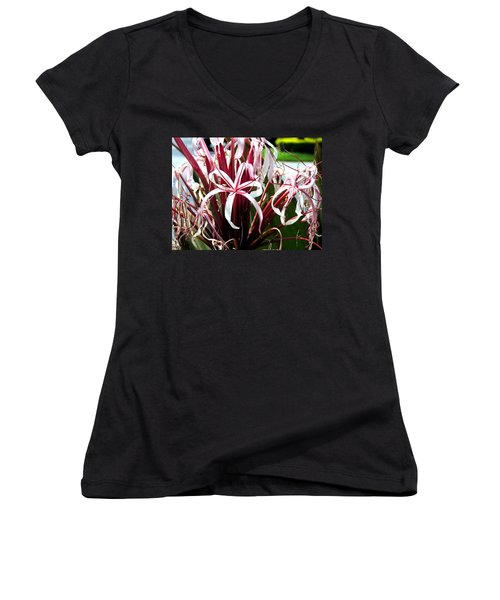 Ribbon's And Lace Women's V-Neck T-Shirt