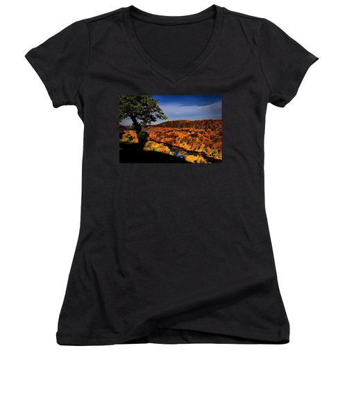 Women's V-Neck T-Shirt (Junior Cut) featuring the photograph Rise And Look Around You by Robert McCubbin