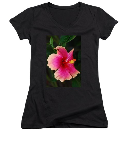 Rise And Shine - Hibiscus Face Women's V-Neck T-Shirt (Junior Cut) by Connie Fox
