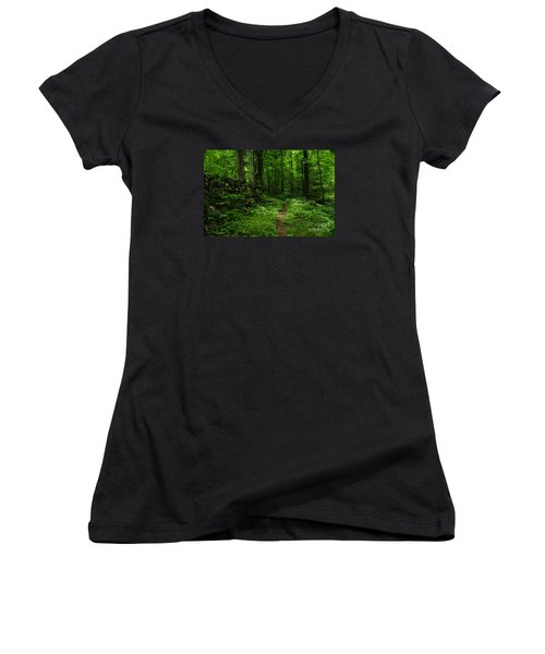 Women's V-Neck T-Shirt (Junior Cut) featuring the photograph Roaring Fork Trail by Debbie Green