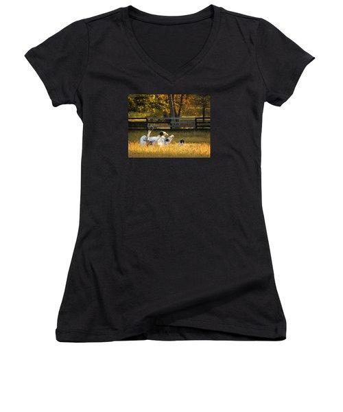 Roll In The Hay Women's V-Neck T-Shirt (Junior Cut) by Joan Davis