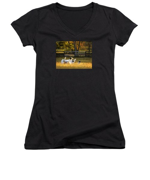 Roll In The Hay Women's V-Neck (Athletic Fit)