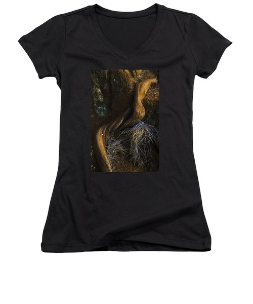 Tree Root Women's V-Neck (Athletic Fit)