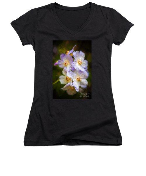Rosa Canina Women's V-Neck T-Shirt