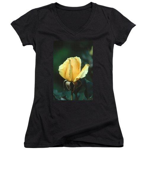 Rose 2 Women's V-Neck T-Shirt (Junior Cut)