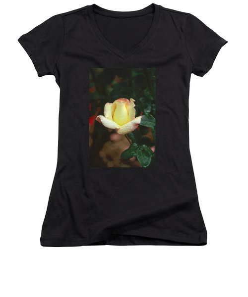 Rose 3 Women's V-Neck T-Shirt (Junior Cut) by Andy Shomock