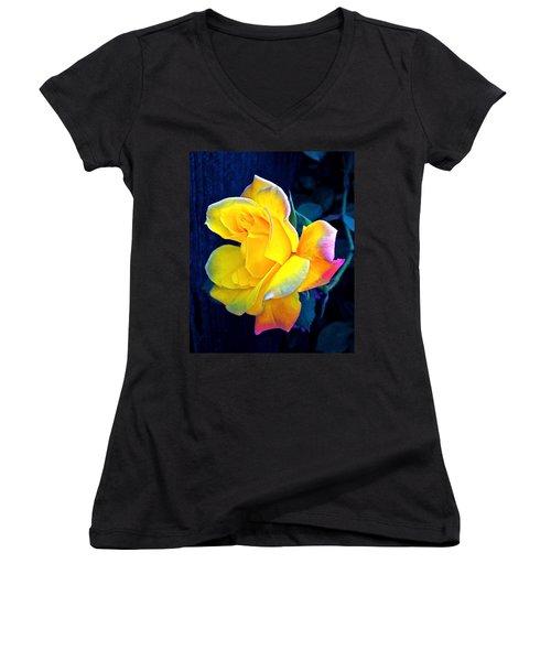 Women's V-Neck T-Shirt (Junior Cut) featuring the photograph Rose 4 by Pamela Cooper