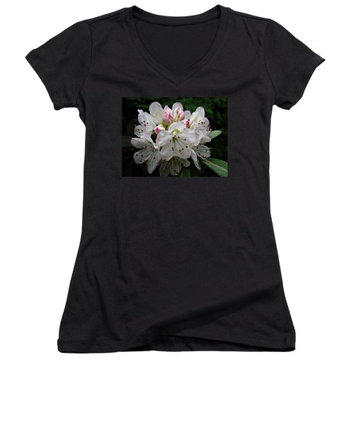 Rose Bay Rhododendron Women's V-Neck (Athletic Fit)
