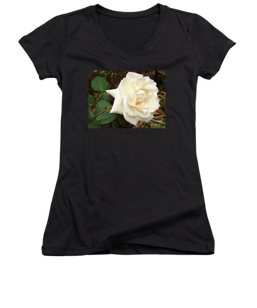 Rose In The Rain Women's V-Neck (Athletic Fit)