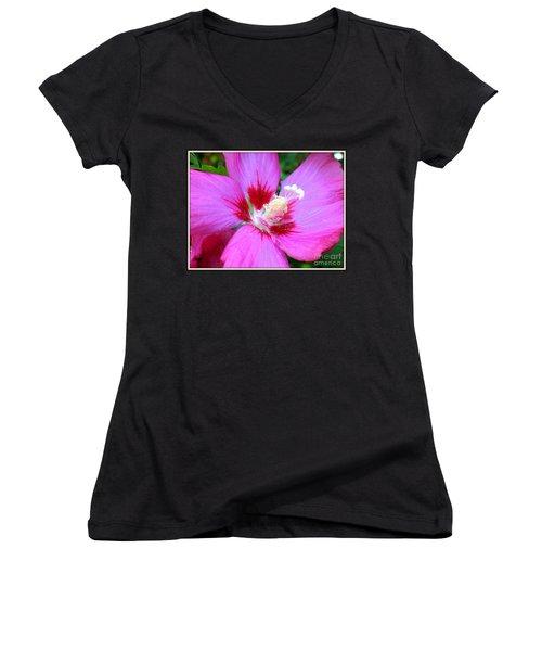 Rose Of Sharon Hibiscus Women's V-Neck T-Shirt (Junior Cut) by Patti Whitten