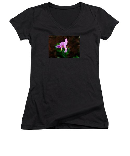 Rose Pogonia Orchid Women's V-Neck T-Shirt (Junior Cut) by William Tanneberger