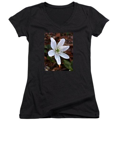 Wild Round-lobe Hepatica Women's V-Neck T-Shirt (Junior Cut)