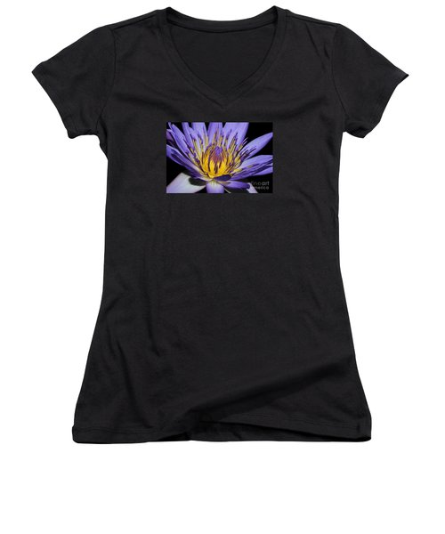 Royal Purple Water Lily #5 Women's V-Neck T-Shirt (Junior Cut) by Judy Whitton