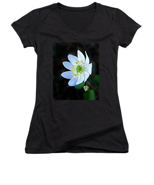 Rue Anemone Women's V-Neck (Athletic Fit)