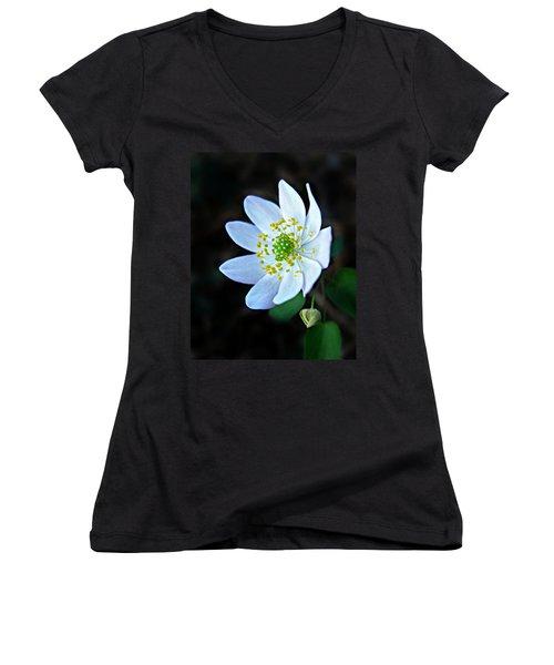 Rue Anemone Women's V-Neck T-Shirt