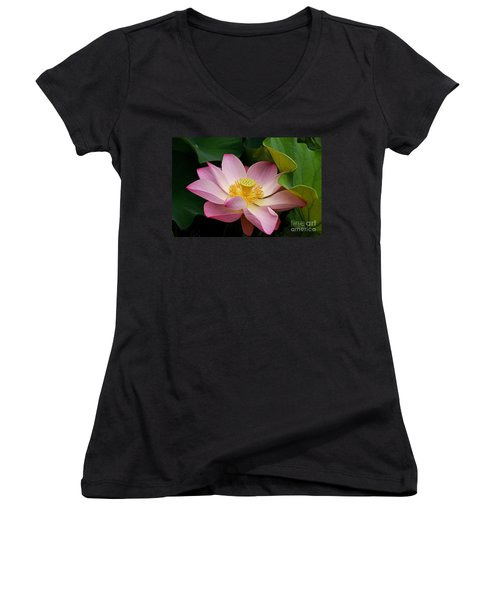 Women's V-Neck featuring the photograph Sacred Lotus by Byron Varvarigos