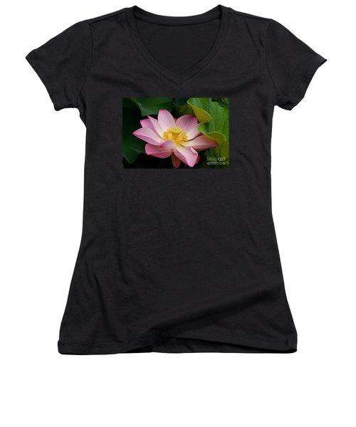Sacred Lotus Women's V-Neck