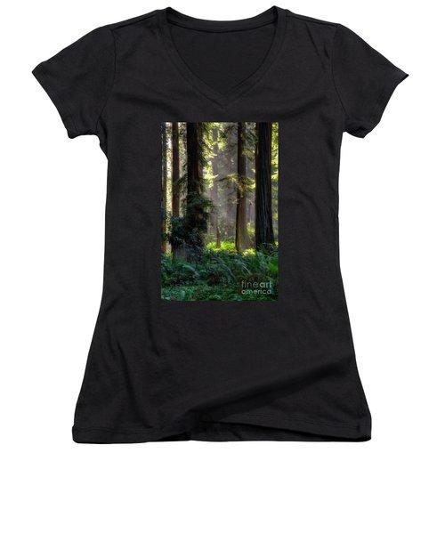 Sanctuary 2 Women's V-Neck T-Shirt (Junior Cut) by Mark Alder
