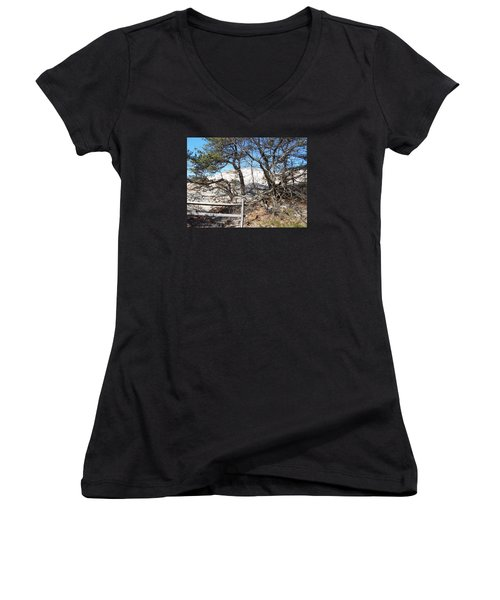Sand Dune With Trees Women's V-Neck T-Shirt (Junior Cut) by Catherine Gagne