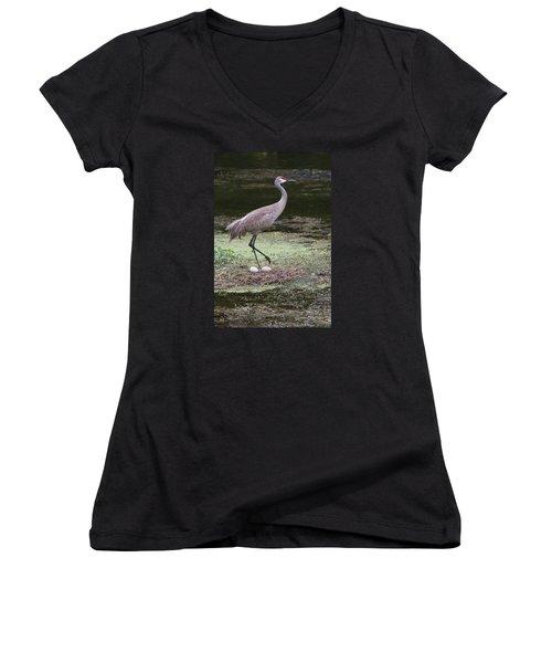 Women's V-Neck T-Shirt (Junior Cut) featuring the photograph Sandhill Crane And Eggs by Paul Rebmann