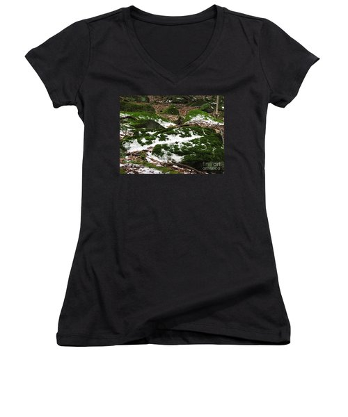 Sea Of Green Women's V-Neck T-Shirt (Junior Cut) by Michael Krek