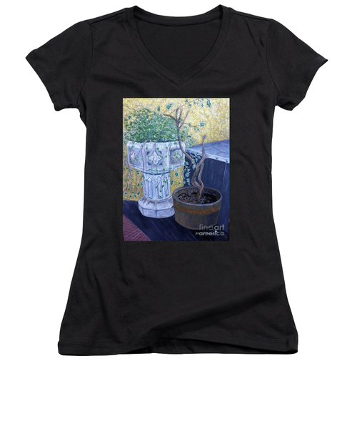 Women's V-Neck T-Shirt (Junior Cut) featuring the painting Sean's Planter by Brenda Brown