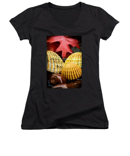 Seashells II Women's V-Neck T-Shirt