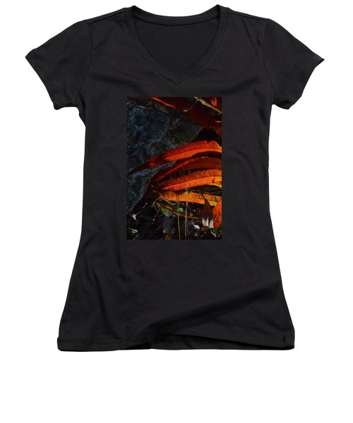 Seasonal Color Theory Women's V-Neck T-Shirt (Junior Cut) by Brian Boyle