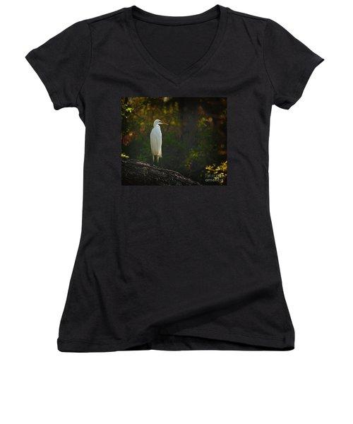Shadow Heron Women's V-Neck T-Shirt