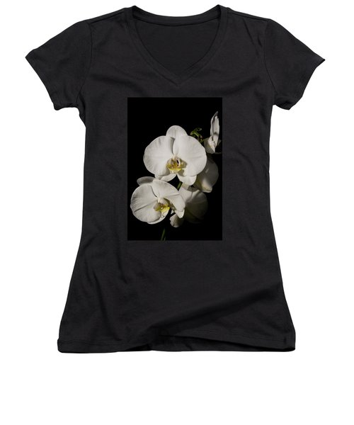 Shadowy Orchids Women's V-Neck