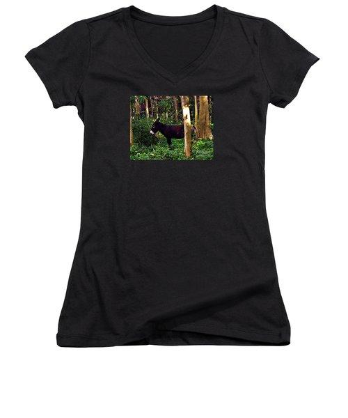 Shhh I'm Hiding Women's V-Neck T-Shirt (Junior Cut) by Patricia Griffin Brett