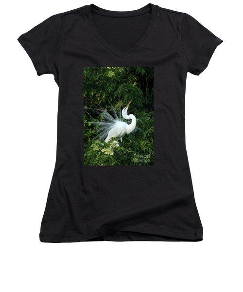 Showy Great White Egret Women's V-Neck