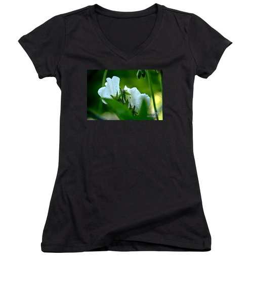 Shyness Women's V-Neck T-Shirt