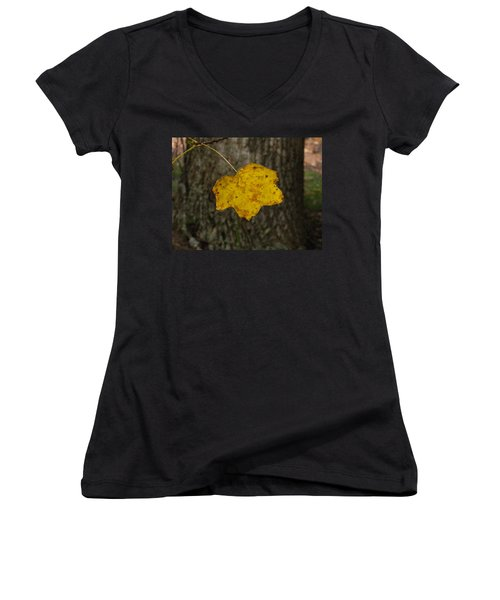 Women's V-Neck T-Shirt (Junior Cut) featuring the photograph Single Poplar Leaf by Nick Kirby