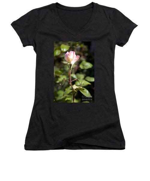 Women's V-Neck T-Shirt (Junior Cut) featuring the photograph Single Rose by David Millenheft