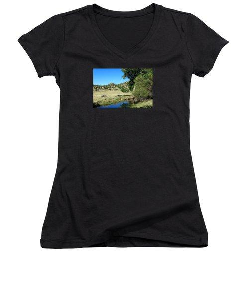 Sleepy Summer Afternoon Women's V-Neck T-Shirt (Junior Cut) by Elizabeth Sullivan