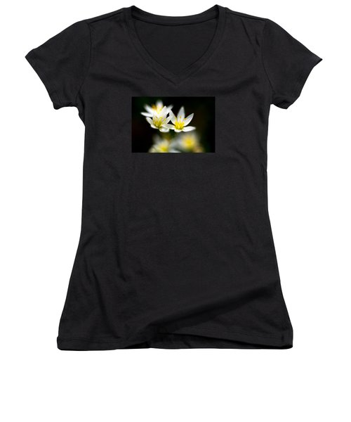 Small White Flowers Women's V-Neck T-Shirt (Junior Cut) by Darryl Dalton