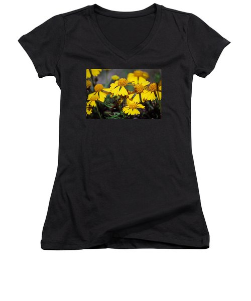 Women's V-Neck T-Shirt (Junior Cut) featuring the photograph Sneezeweed by Ester  Rogers