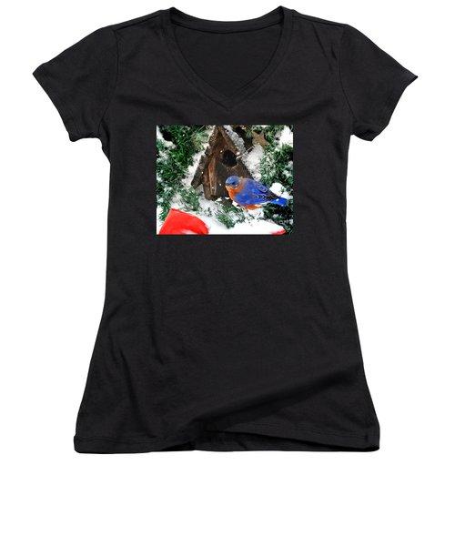 Snow Bluebird Christmas Card Women's V-Neck T-Shirt (Junior Cut) by Nava Thompson