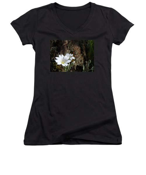 Snow In Summer Women's V-Neck (Athletic Fit)
