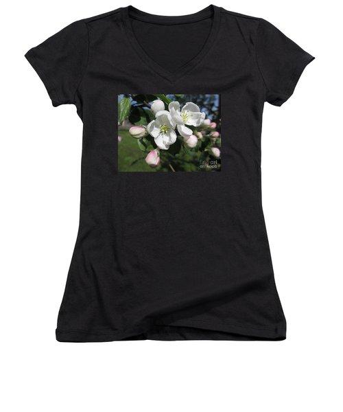 Snow White Women's V-Neck T-Shirt (Junior Cut) by Martin Howard